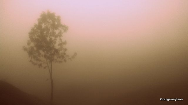 The mist as seen from the top station, Munnar