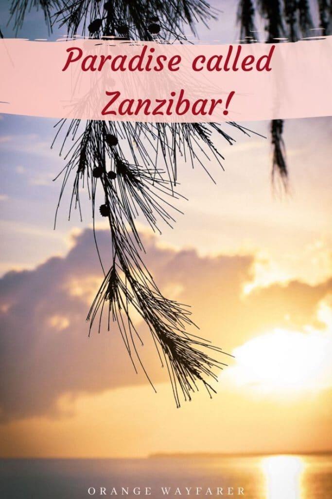 Zanzibar phtoblog depicting art culture and nature of zanzibar. Zanzibar Indian ocean. #zanzibar #zanzibarisland #zanzibarculture #zanzibarart #indianocean #zanzivarinstagram #instagramspotsinzanzibar #zanzibarsunset #africa #africanisland #africansunset  #tanzaniatravel