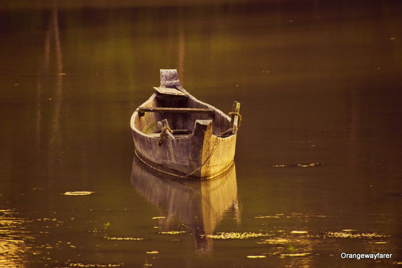 Boatride in Kaziranga
