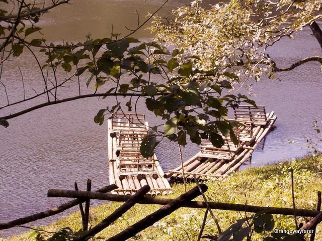 Bamboo rafting in Periyar lake, Thekkady