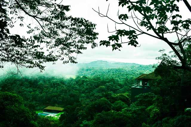 taj madikeri resort & spa, coorg madikeri, karnataka: the view