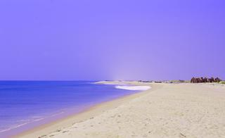 Dhanushkodi Travel guide: The Haunting of a Forgotten Town by the Indian Ocean