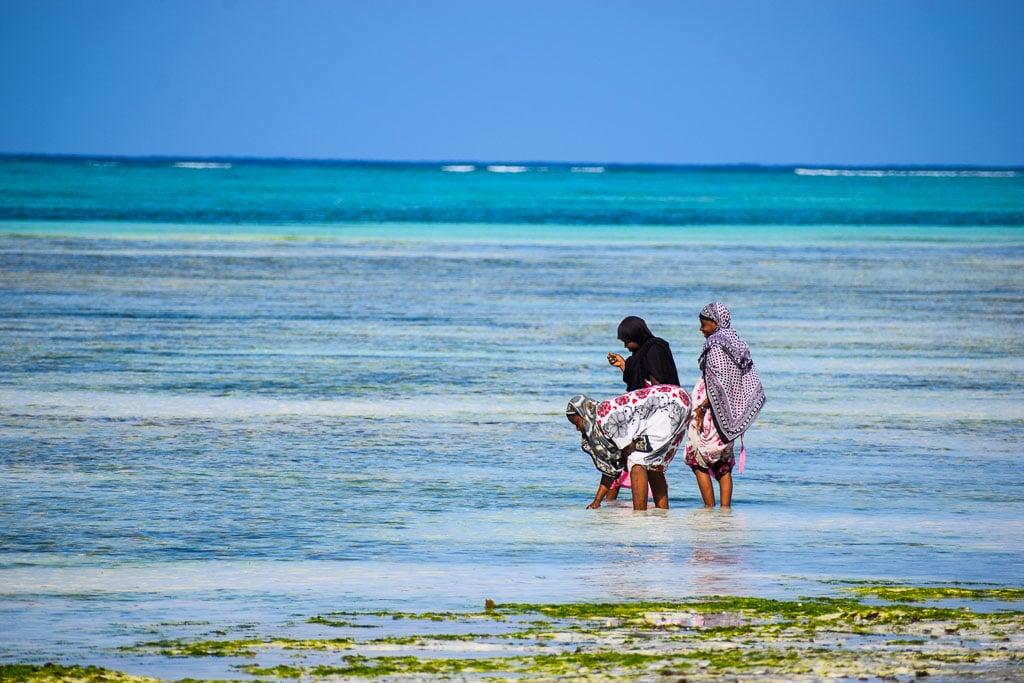 Local fishing village at Zanzibar: nungwi zanzibar