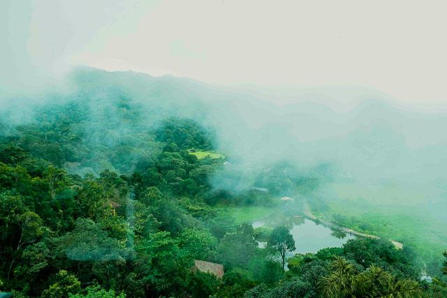 taj madikeri resort & spa, coorg madikeri, karnataka: view