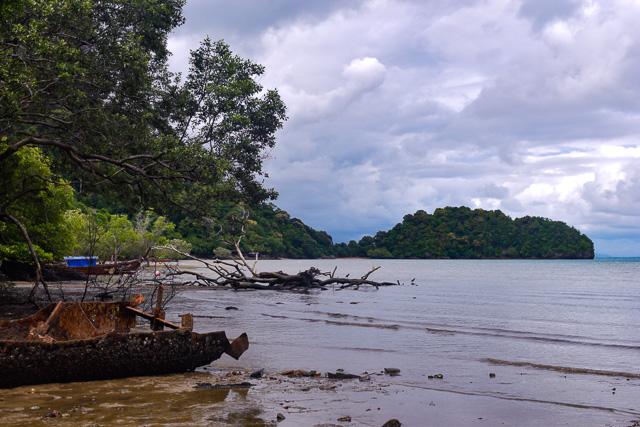 Mangrove Beach at Railay, Krabi