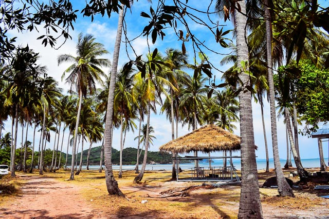 Coconut grove in Thailand: Koh Yai Yoi. beaches in Thailand which are not crowded.