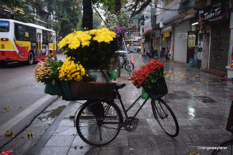 Hanoi Flower Market