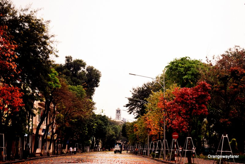 Hanoi during Fall
