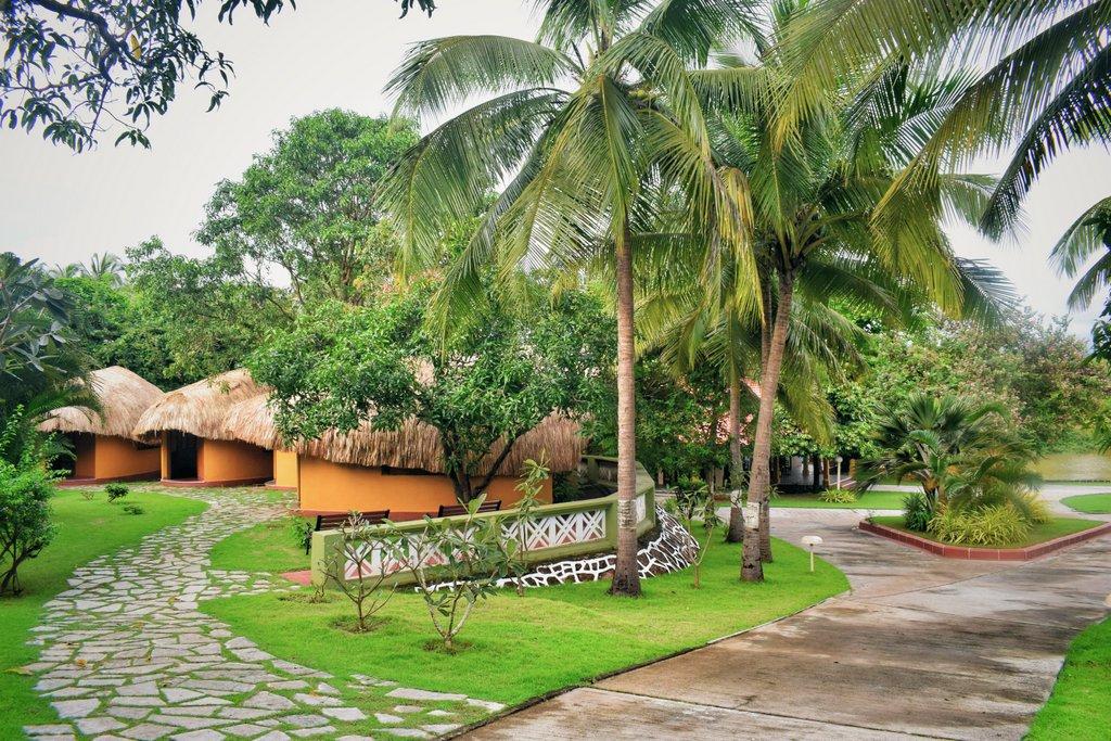 Nature in Goa