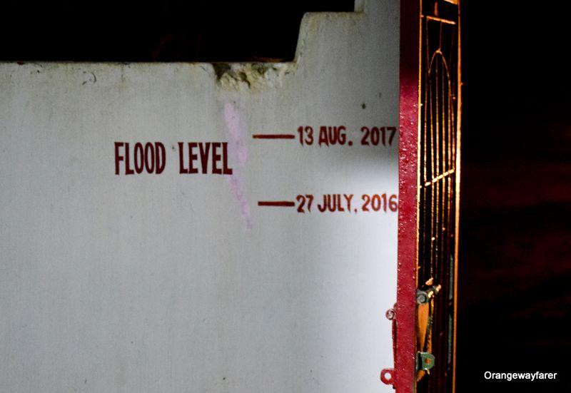 Flood scene in Kaziranga national park