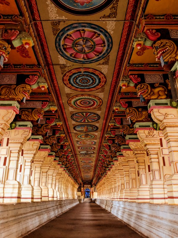 Ramanathaswamy Temple thousand pillar corridor picture: Things to do at Rameswaram