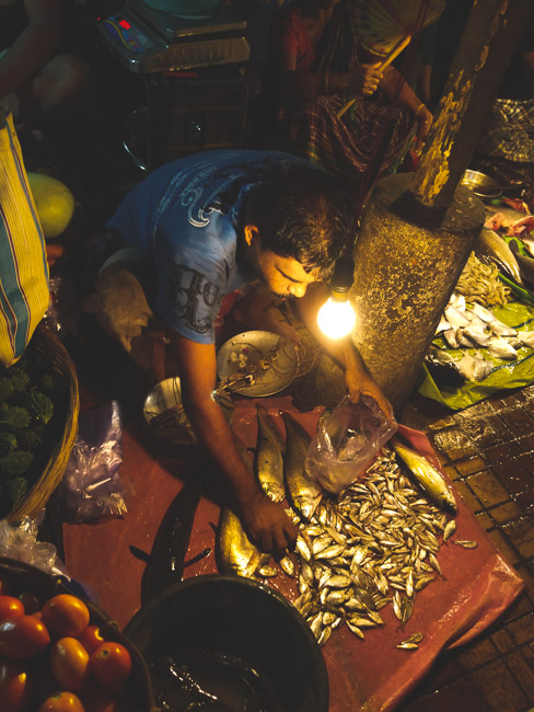 famous fish market in kolkata