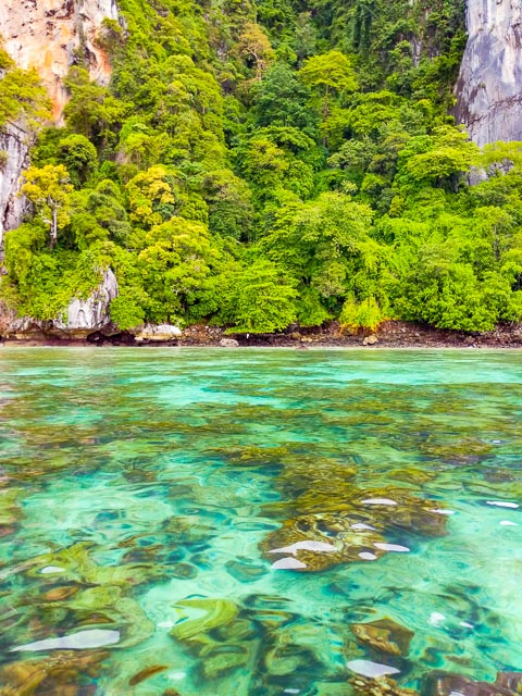 SNorkelling at Phi Phi Island Thailand