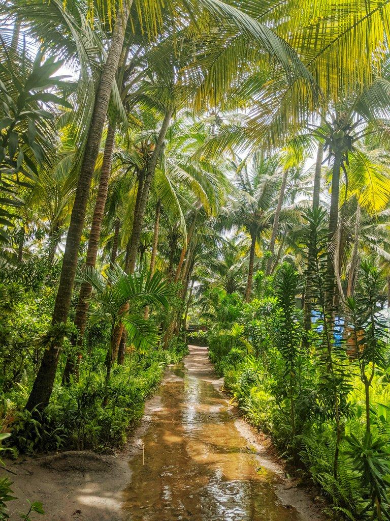 Yab Yum Resort: Eco stays in Goa