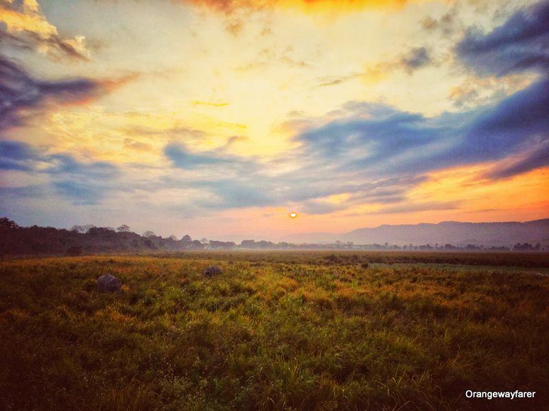 Sunrise at Kohora Range Kaziranga