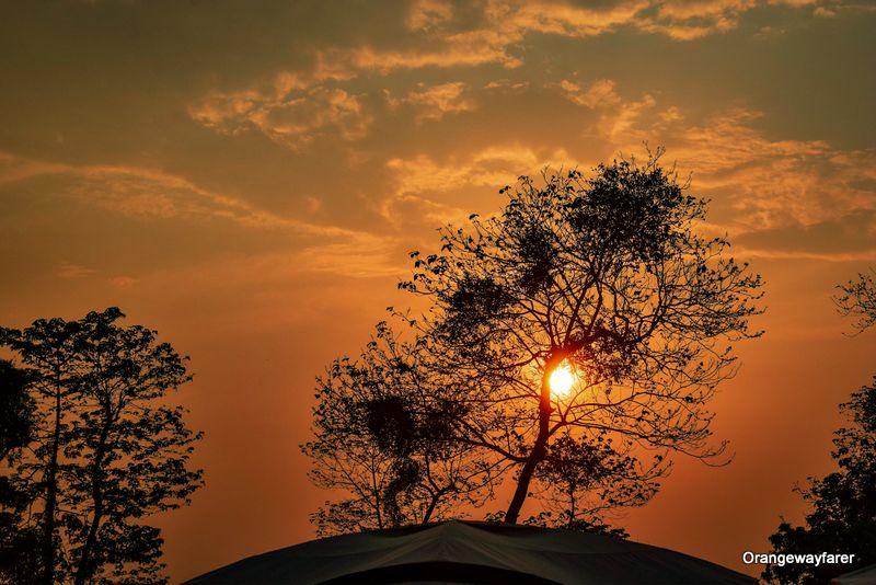 Manas National Park Camp