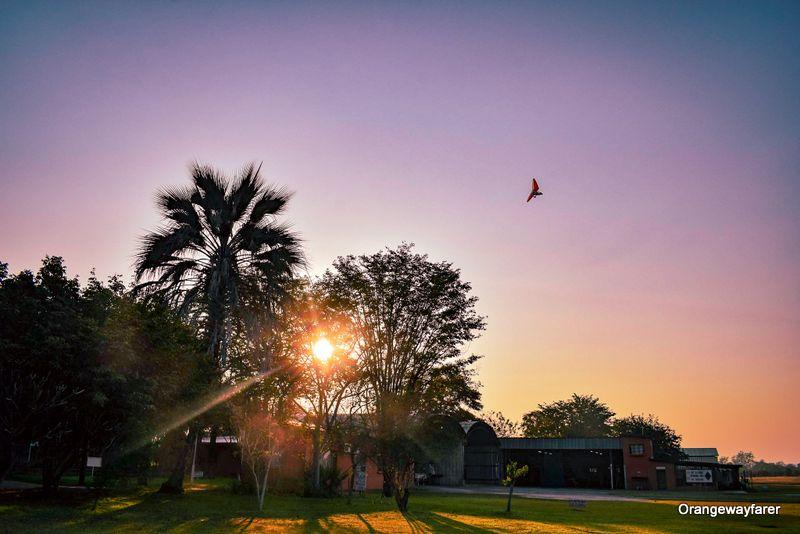 Microlight flying high at Livingstone Zambia