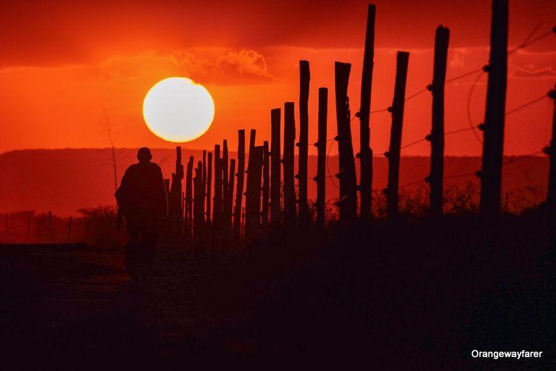 Masaimara Sunset