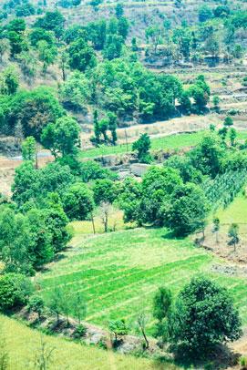 Purushwadi eco tourism near Bombay