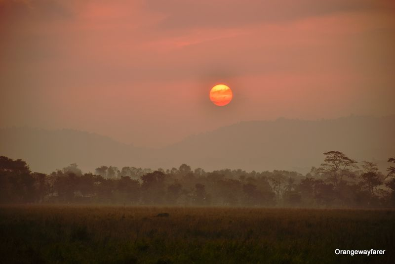 Sunrise at Kaziranga forest, Assam