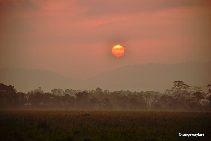 Sunrise at Kaziranga forest, Assam