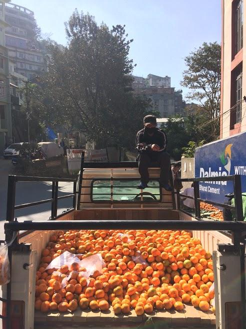 Aizawl oranges