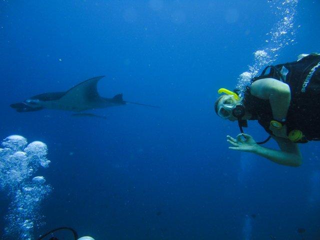 snorkelling at Maldives