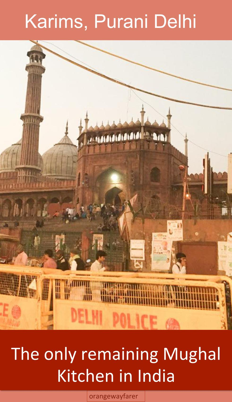 Jama Masjid and the entry to Karims. A cacophony!
