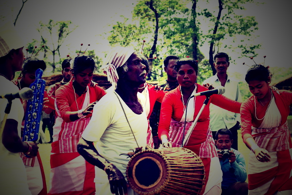 Jhumur is a dance form by the tea garden workers. A celebration in the foothill of Himalaya at Manas national Park