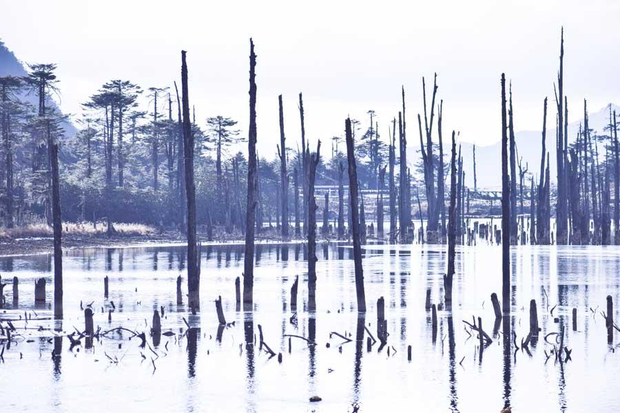 Madhuri lake in Tawang