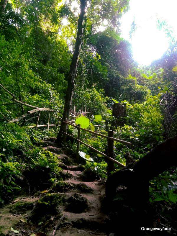 The way up to the top of Kuang Si Falls, Luang Prabang