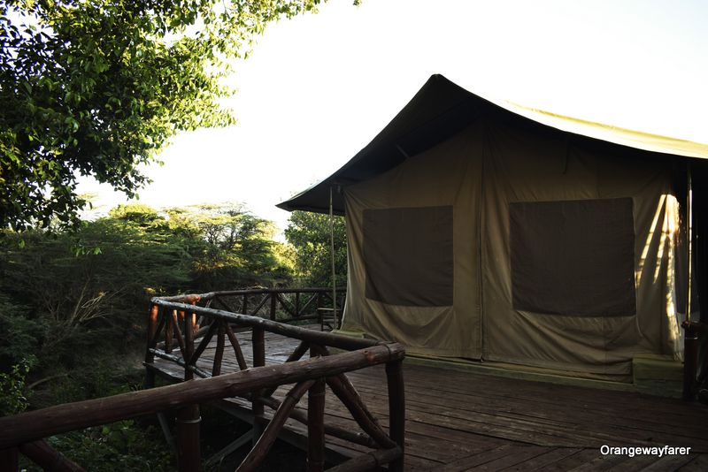 A tent at Azure Mara Haven