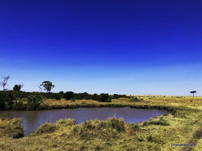 The Ultimate Travel Guide to Kenya During the Great Migration at Masai Mara! – Orange Wayfarer