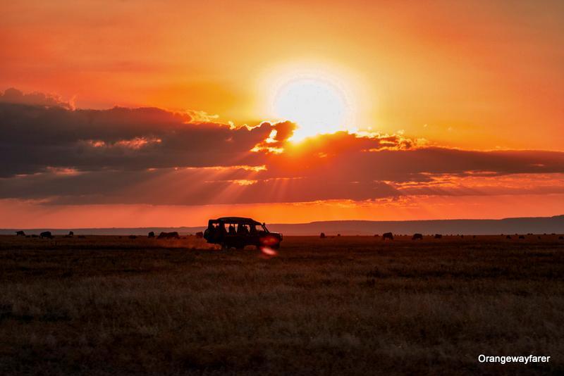 Africa safari: Masai Mara Sunset