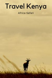 #africa #kenyasafari #kenya #safari #africasafari #wildlife
