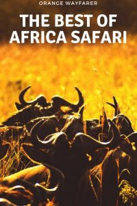 #masaimara #sunset #africasafari