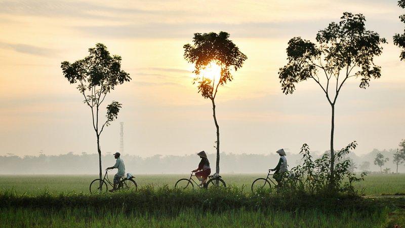 Bike Tide in Rural Vietnam Hoi an
