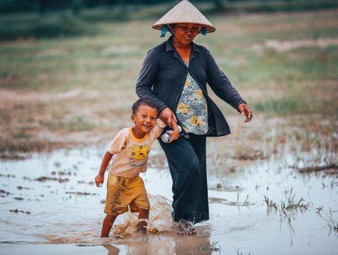 Hoi an Rice paddy field