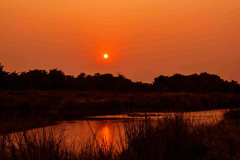 Sunset at Chitwan  National Park, nepal