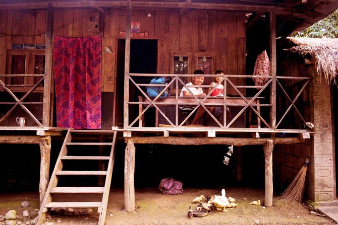 Tharu housesholds at Chitwan National Park