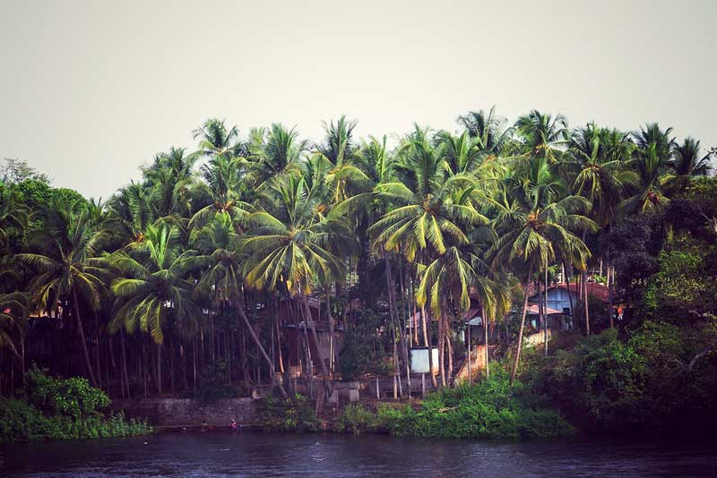 Rural Indian scene from the western ghats, Dandeli. the river is situated by the kali river. It is very near to Goa.