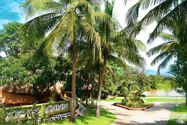 Mercure Devaaya Retreat: the best resort in Goa!