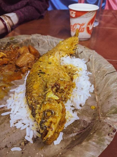 Pabda fish: menu for Bengali wedding