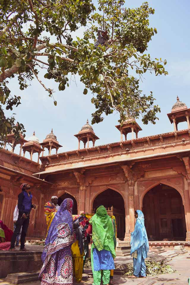 Salem Chisti's Dargah, Fatehpur Sikri: Best Places