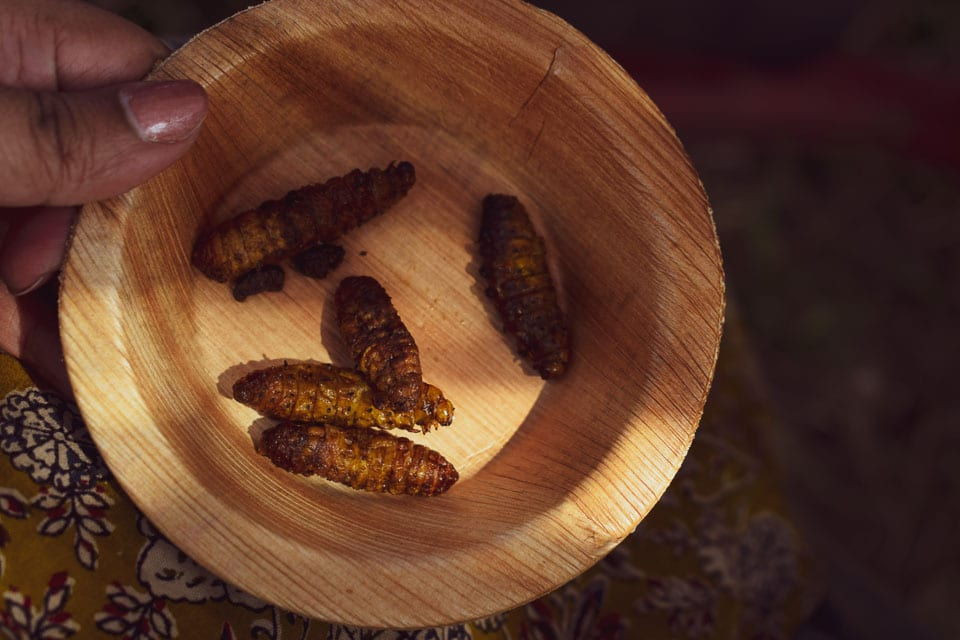 Silk Worm cooked and served as a part of Bodo food soread in Assam