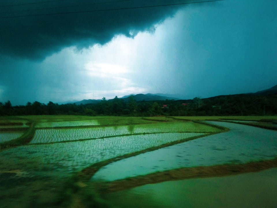 Rice Paddy fields near Luang Prabang: day Tours from Luang Prabang!