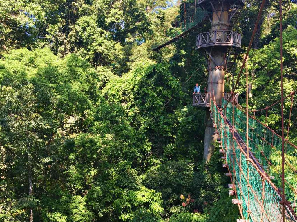 Danum Valley: offbeat destinations in Malaysia