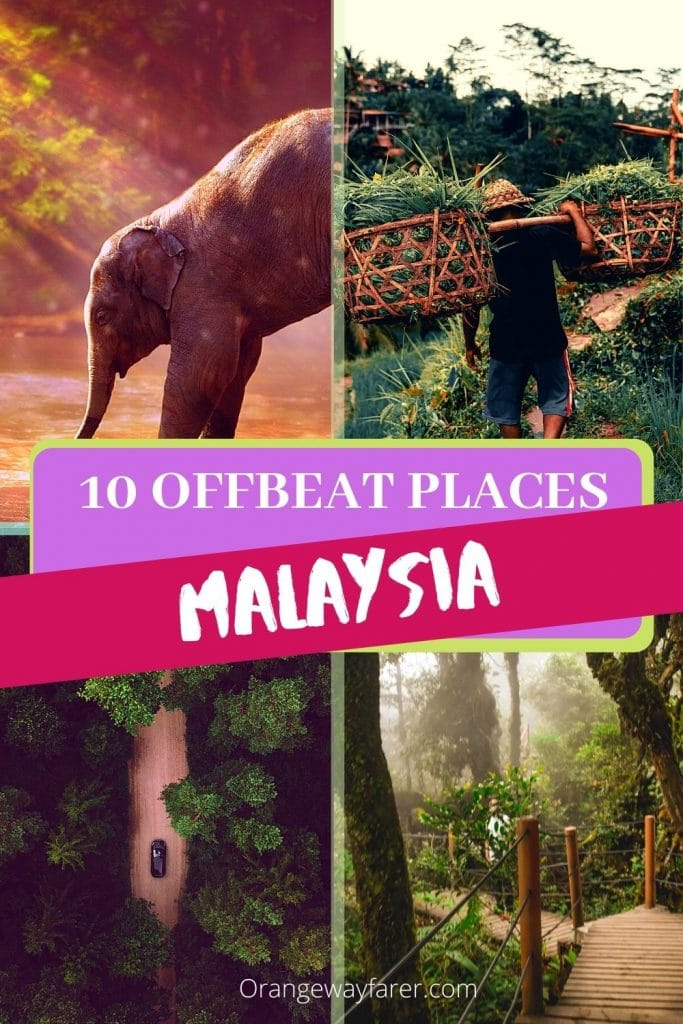 Offbeat destination in Malaysia that will blow your mind. alternate beautiful places to visit in Malaysia. Malaysia beyond Kuala Lumpur and Langkawi. beautiful places to visit in Malaysia for nature lovers. Some of these are UNESCO world heritage sites. Malaysia is home to ancient rainforest where Orangutans live. #malaysia #offbeatplacestovisitinmalaysia #romanticdestinationsinmalaysia #orangutan
