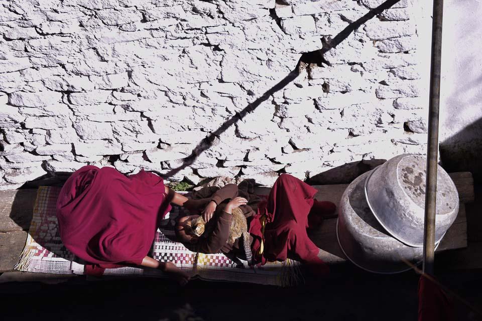 Monks at the Tawang Monastery