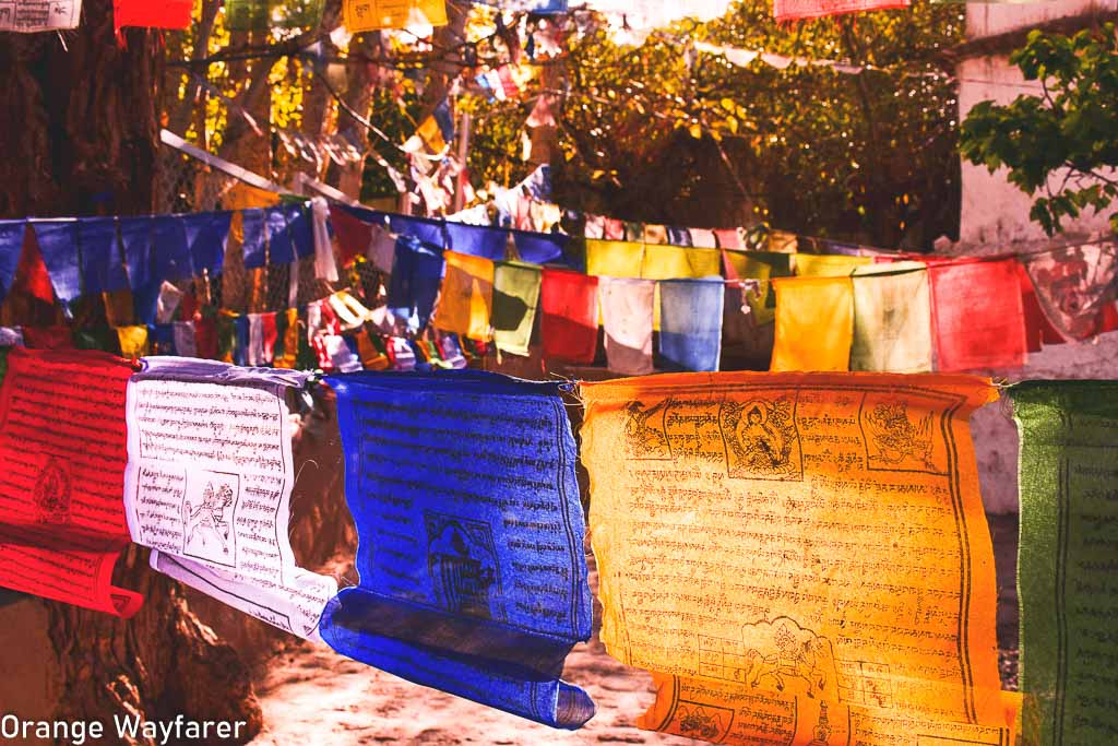 Things to buy from Leh: Travel guide to Leh